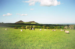 The Eildon Hills from the farm